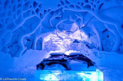 Tromso Ice Domes-6