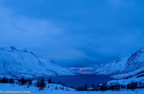 Tromso Blue Light Tour-12