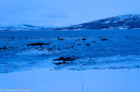 Tromso Blue Light Tour-7