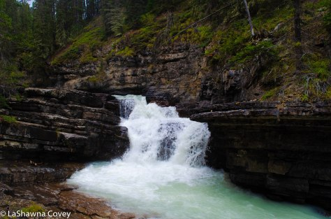 Johnston Canyon and Inkpots hike-10