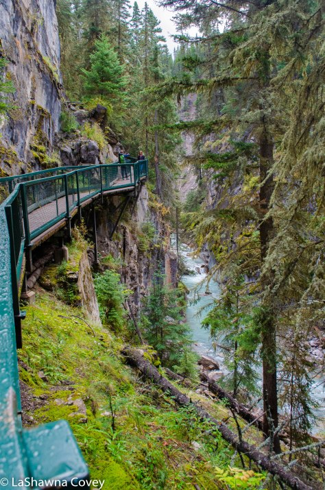 Johnston Canyon and Inkpots hike-2