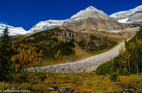 Plains of Six Glaciers-8