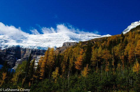 Plains of Six Glaciers-9