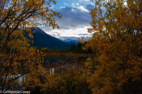 Vermillion Lakes-10