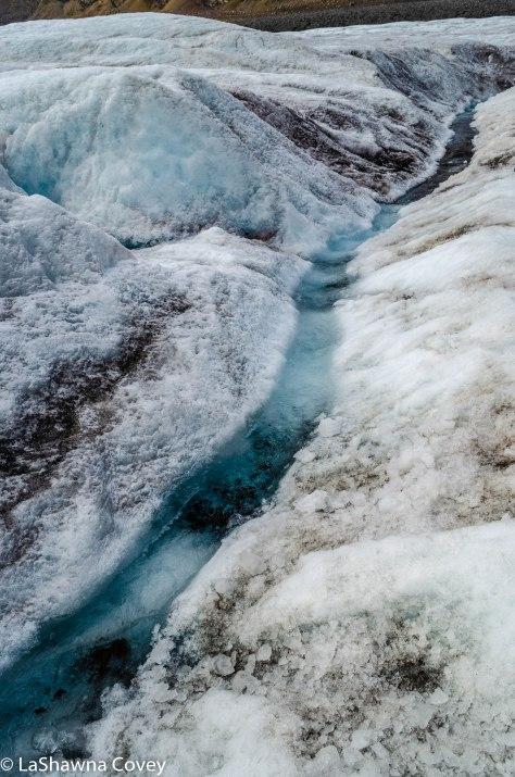 Athabasca Glacier-5