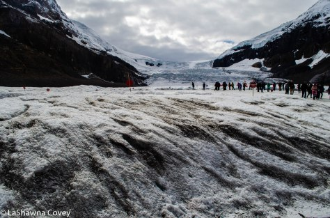 Athabasca Glacier-7