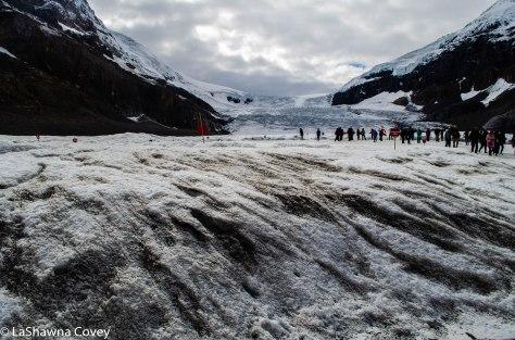 Athabasca Glacier-7