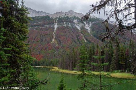Beave and Summit Lakes hike-3