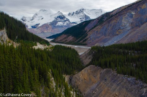 Icefields Parkway-10