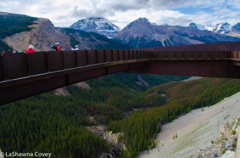Icefields Parkway-12