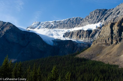 Icefields Parkway-16