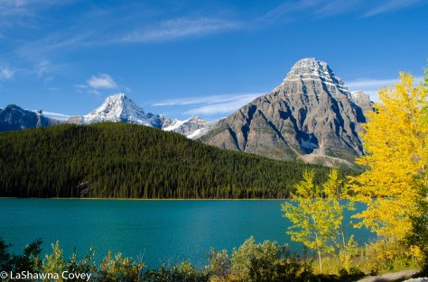 Icefields Parkway-18