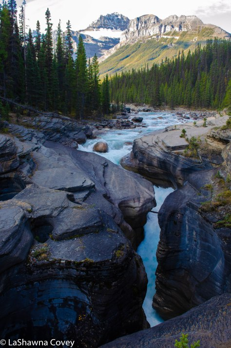 Icefields Parkway-19