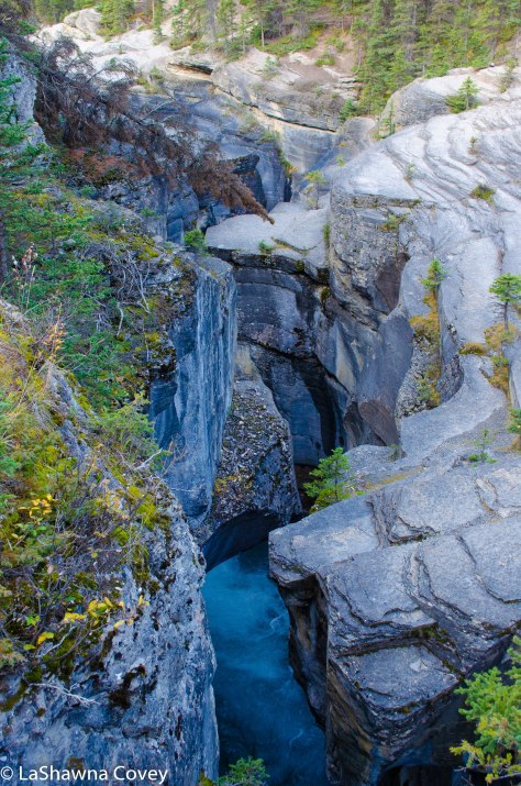 Icefields Parkway-20