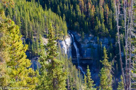 Icefields Parkway-23