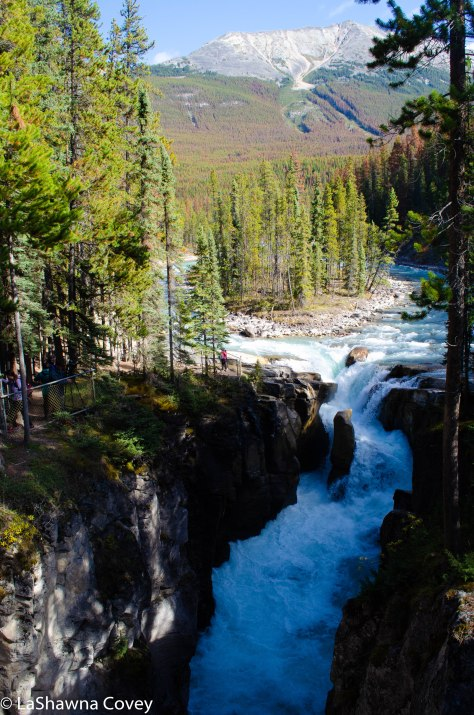 Icefields Parkway-26