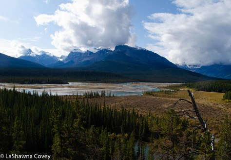 Icefields Parkway-3