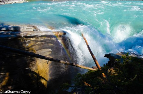 Icefields Parkway-33