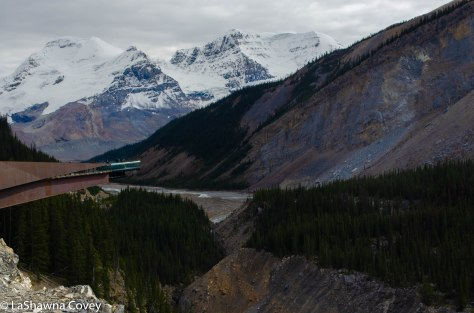 Icefields Parkway-7