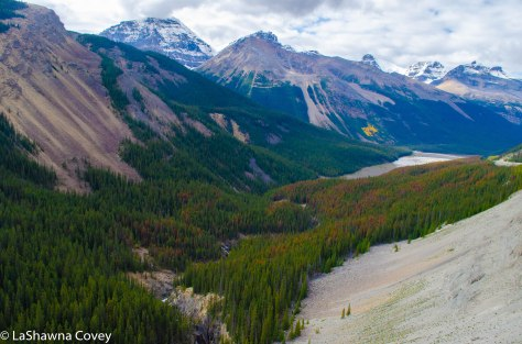 Icefields Parkway-8