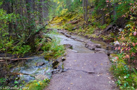 Maligne Canyon hike-2