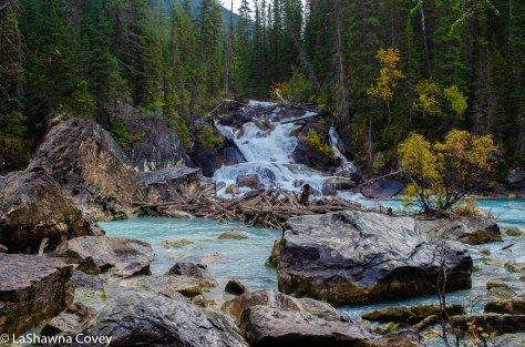 Yoho National Park-3
