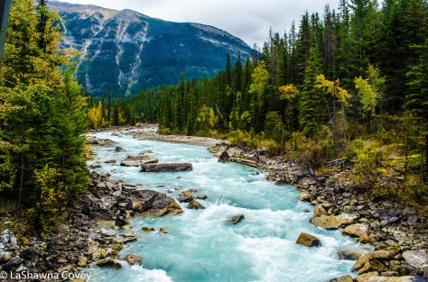 Yoho National Park-6